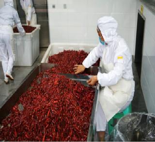 重庆振业食品厂-重庆火锅底料厂家一角